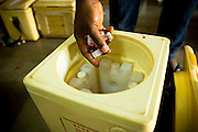 A health worker fills ice boxes with polio vaccines at the beginning of a second day of vaccination during a national polio immunization execise in Savelugu, northern Ghana on Friday March 27, 2009.