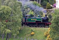 BOAT OF GARTEN - Een oude trein rijdt op zaterdag langs de Boat of Garten Golf Club