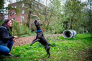 shoot met hond Lilly en haar baasje Angela