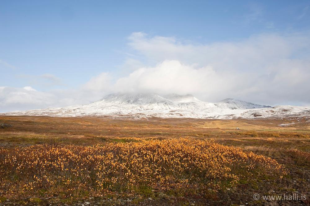 Autumn colors and mountains in distance at Thingvellir, Iceland - Haustlitir og fjallasýn á Þingvöllum