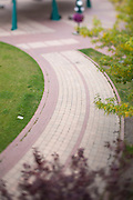 A brick walkway in a city park. Taken with a tilt-shift lens to give a shallow depth of field. Missoula Photographer, Missoula Photographers, Montana Pictures, Montana Photos, Photos of Montana