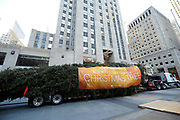 The 75-foot Rockefeller Center Christmas Tree, from State College, PA, pulls into Rockefeller Plaza, Saturday, Nov. 11, 2017, in New York.  The 85th Rockefeller Center Christmas Tree Lighting ceremony will take place on Wednesday, Nov. 29. (Diane Bondareff/AP Images for Tishman Speyer)