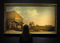 © licensed to London News Pictures. LONDON, UK.  13/06/11. A gallery assistant looks at 'Gimcrack on Newmarket Heath, with a Trainer, a Stable Lad and a Jockey' by George Stubbs (1724-1806) it is expected to fetch in excess of £20 million at auction on 5th July. Photo call at Christie's, London, for the unveiling of rarely seen masterpieces by Picasso, Michelangelo and Gainsborough before they are offered for sale. Photo credit should read Stephen Simpson/LNP