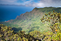View over the Kalalau Valley towards the ocean on the island of Kauai, Hawaii, USA.