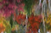 Abstract autumn colours reflect off of a lake. © Allen McEachern.