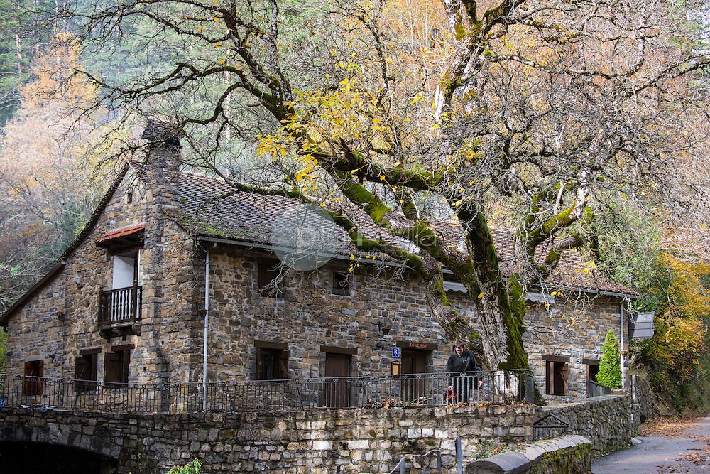 Área recreativa. Valle de Ansó. Parque Natural de los Valles Occidentales. Pirineos. Huesca ©AntonioReal Hurtado / PILAR REVILLA