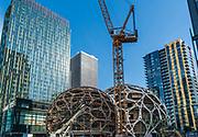 Bio-spheres, geodesic domes, Amazon Corporation, Seattle, Washington, USA  06/30/16