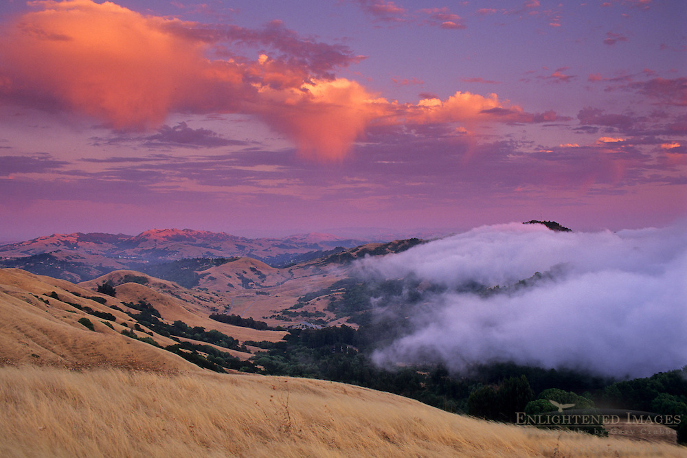 Fog rolling in over the Oakland Hills at sunset from SF Bay, near Orinda, Contra Costa County, CALIFORNIA