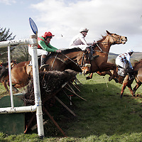 Action from the Killaloe point to point last Saturday.<br /> <br /> Photograph by Yvonne Vaughan.