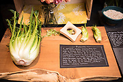 CHICORY, Cichorium intybus<br />Showcase: 'Puntarelle' OP<br />Seed Grower: Uprising Seeds<br />Chef: Jesse McCleery, Pilgrimme<br />Dish: Roveja peas, smoked kelp, puntarelle, fermented chiles