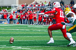 NORMAL, IL - October 05: Braxton Haley lunges for a loose ball during a college football game between the ISU (Illinois State University) Redbirds and the North Dakota State Bison on October 05 2019 at Hancock Stadium in Normal, IL. (Photo by Alan Look)