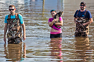 Vidor resdients fleeing their home with their nieghbors cat. Hurricane Harvey, was downgraded to a tropical storm when it flooded Vidor, Texas and the surrounding area, but the water continued to rise.