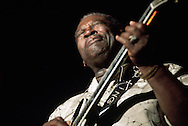 B.B. King performing at the Juan-les_Pins Jazz Festival, Provence, France
