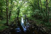 River Teign near Chagford on Dartmoor in Devon, UK