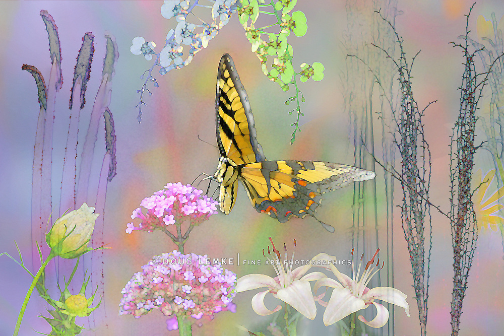 Butterfly And Flowers, Computer Graphics, Digital Art