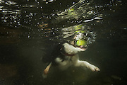 Tam the collie swimming underwater in a Scottish Loch