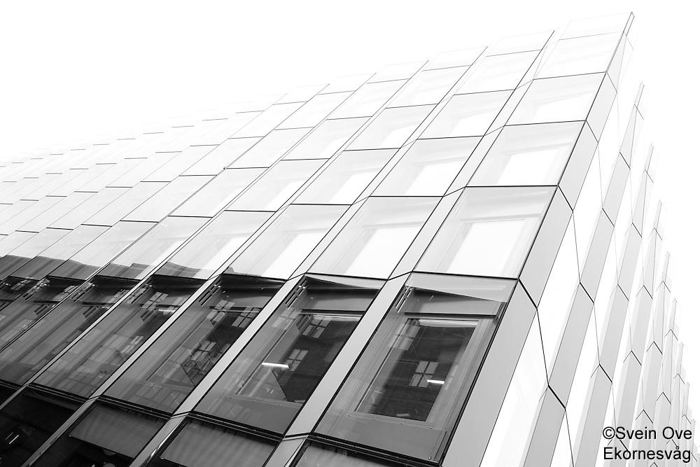 Linjer.<br /> Foto: Svein Ove Ekornesvåg