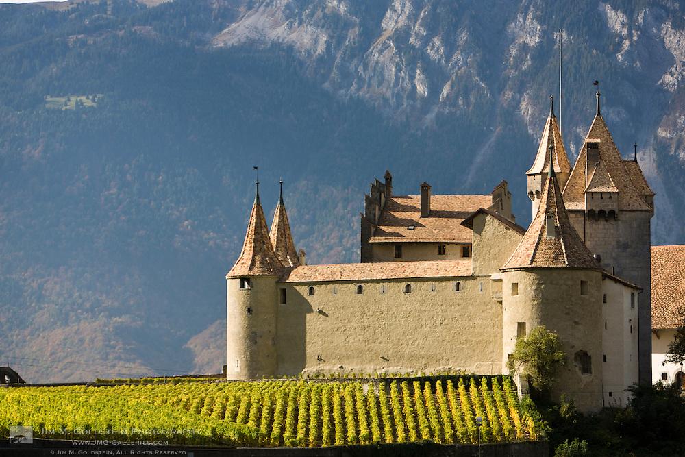 Rows of grape vines surround a Swiss Castle