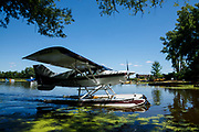 Maule at the seaplane base, Airventure 2017.