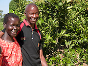 David Odonga, 45, and his wife Akia Joyce in front of one of their 300 orange trees. They have 13 children and look after another 3 orphaned children. Their farm has grown from nothing, in the days when they could only afford one meal a day. Thanks to the training provided by Send a Cow, they are now able to feed their family and their farm is fast becoming a profitable business. Their eldest son Ouran James has just completed a diploma in Agriculture.