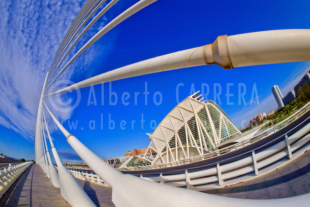 Alberto Carrera, Príncipe Felipe Science Museum and Assut d'or Bridge, City of Arts and Sciences, Valencia Comunity, Valencia, Spain, Europe