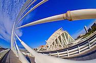 Alberto Carrera, Príncipe Felipe Science Museum and Assut d'or Bridge, City of Arts and Sciences, Valencia Comunity, Valencia, Spain, Europe