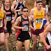 2015 NCAA Cross Country Championships
