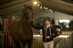 Spits Thibeau, BEL, Juragold Bormes<br /> Jumping Mechelen 2017<br /> © Sharon Vandeput<br /> 26/12/17