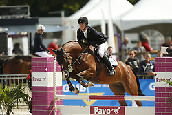 012 - Fedya - Van Der Maat Bart (NED)<br /> 4 Jarige Springen<br /> KWPN Paardendagen - Ermelo 2014<br /> © Dirk Caremans