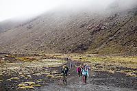 tongariro expeditions photo shoot in the tongariro national park worlds most scenic alpine crossing hiking in new zealand