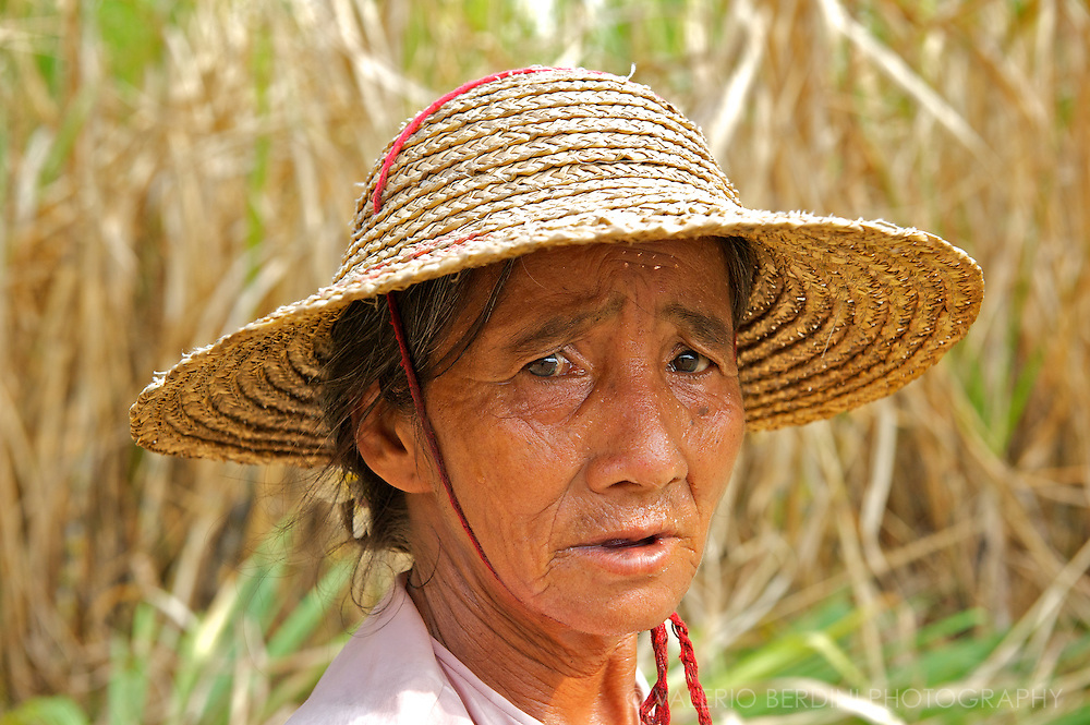 Temperature in the plantations can rise well above 100°F for most of the working day.