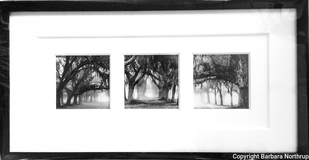 "Printed on archival rag paper.  Print size: 4x4"" (3). Framed: 11x21.<br />