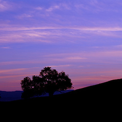 Sunset in the Santa Ynez Valley, CA.