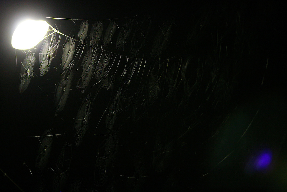 Distrito dos Maias_MG, Brasil...Detalhe de teias de aranha na lampada...Detail of spiderwebs in the lamp...Foto: LEO DRUMOND / NITRO.