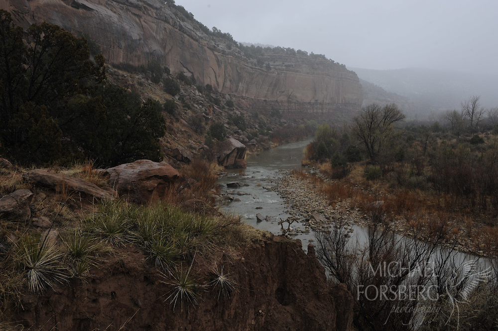 High Plains, shortgrass prairie region..Kiowa National Grassland, New Mexico...A snow squall moves in over the Canadian River carving its way through remote Mills Canyon, which sits nearly a 1000 feet below the flat treeless high plains on the canyon rim..