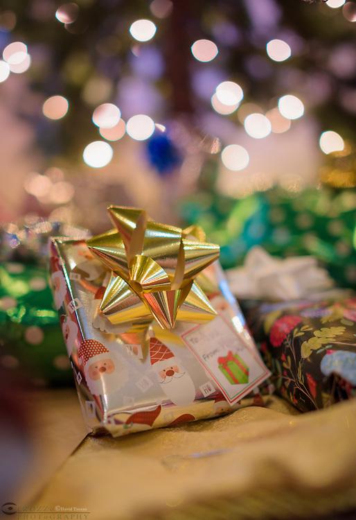 Christmas holiday present