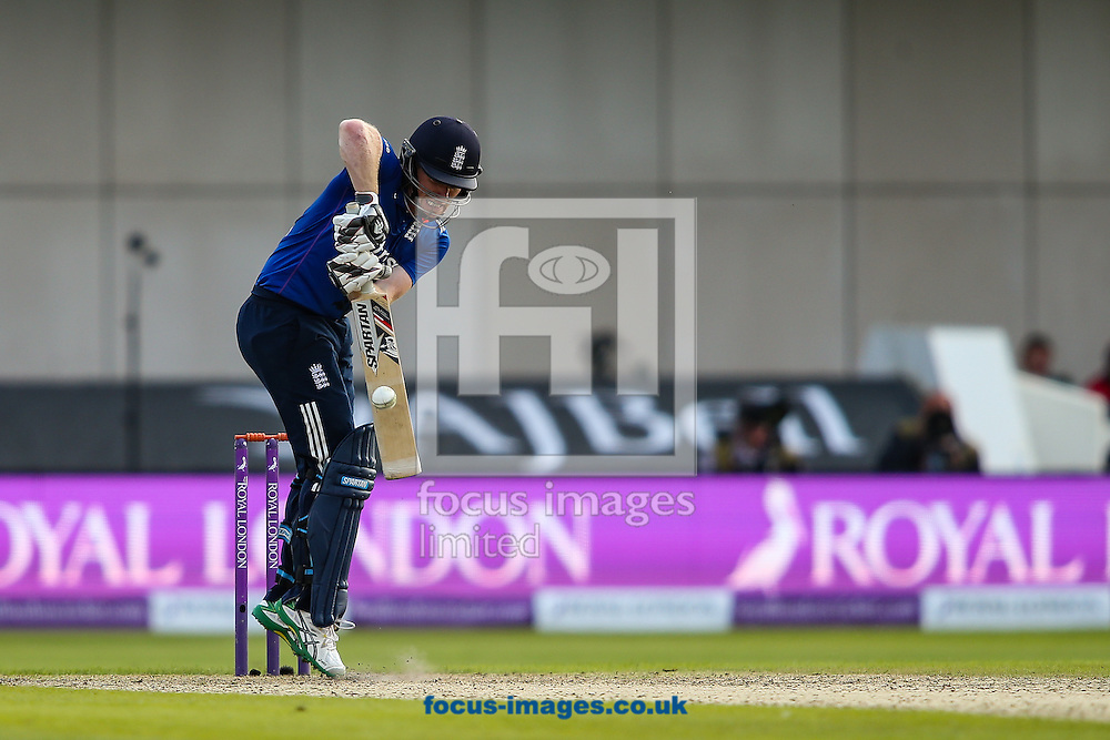 Eoin Morgan of England gets up off of his toes to defend during the 3rd One Day International match at Old Trafford Cricket Ground, Stretford<br /> Picture by Andy Kearns/Focus Images Ltd 0781 864 4264<br /> 08/09/2015