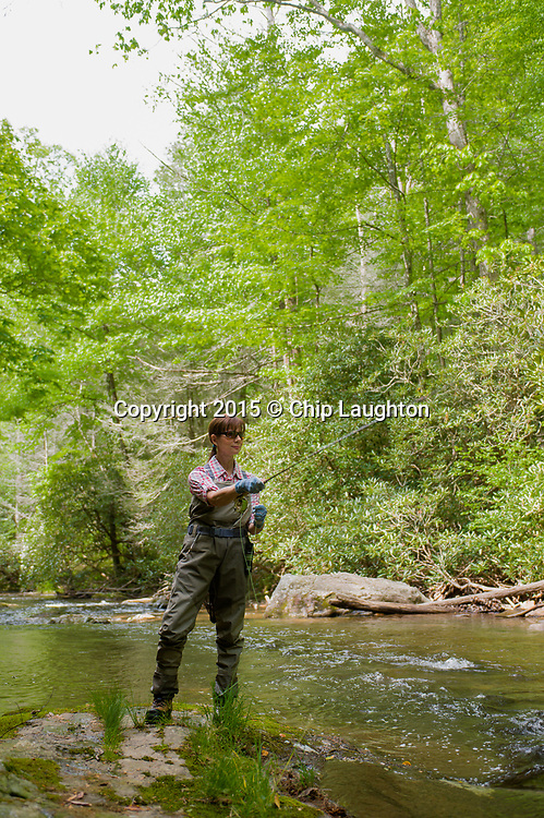WOMAN FLY FISHING STOCK PHOTO IMAGE