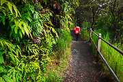 Hiker on the Crater Rim Trail, Hawaii Volcanoes National Park, Hawaii USA
