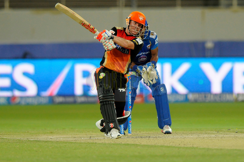David Warner of the Sunrisers Hyderabad bats during match 20 of the Pepsi Indian Premier League Season 2014 between the Mumbai Indians and the Sunrisers Hyderabad held at the Dubai International Stadium, Dubai, United Arab Emirates on the 30th April 2014<br /> <br /> Photo by Pal Pillia / IPL / SPORTZPICS