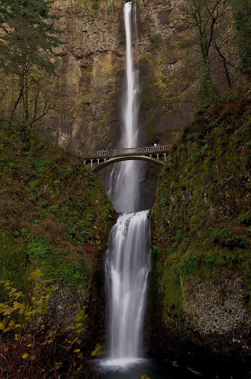 Multnomah Falls in the Columbia River Gorge
