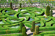Garden detail, Chateau de Villandry, Villandry, Loire Valley, France