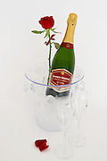 closed Champagne bottle in an ice bucket with two glasses with a red rose