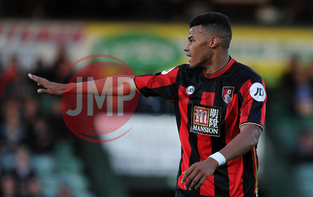 Bournemouth's Tyrone Mings - Photo mandatory by-line: Harry Trump/JMP - Mobile: 07966 386802 - 28/07/15 - SPORT - FOOTBALL - Pre Season Fixture - Yeovil Town v Bournemouth - Huish Park, Yeovil, England.