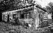I liked the shapes, lines and textures of this old shed.  I made for a nice horizontal composition.  I used a brush tool in Lightroom emphasize the wood grain textures and contrast.