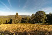 Landschaft mit Lusen im Hintergrund, Bayerischer Wald, Bayern, Deutschland | landscape with Mt. Lusen in background, Bavarian Forest, Bavaria, Germany