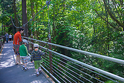 North America, United States, Washington, Bellevue, people in Bellevue Botanical Garden, Ravine Experience suspension bridge