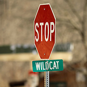 A stop sign also served as a road marker along KY 11 in Wild Cat, Ky., on 3/19/10. Photos by David Stephenson