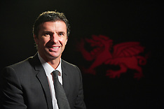101214 Wales appoint Gary Speed