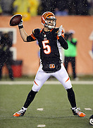 Cincinnati Bengals quarterback AJ McCarron (5) throws a second quarter pass during the NFL AFC Wild Card playoff football game against the Pittsburgh Steelers on Saturday, Jan. 9, 2016 in Cincinnati. The Steelers won the game 18-16. (©Paul Anthony Spinelli)
